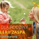Dzień dla Rodziny w Galerii Zaspa